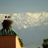 Marrakech avant le rush des fêtes de fin d'année….