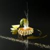 La recette de la semaine : le mille-feuille citron et fruit de la passion