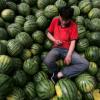 Chine insolite… Vuitton fait sa valise… et les pastèques explosent…