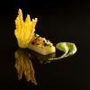 Recette de la semaine : fine gelée de fenouil, courgette croquante…