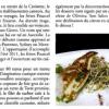 Seasens Cannes ……… La presse en parle …….. » l'esprit Pourcel bien défendu «