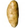 La pomme de terre ne sert pas qu'à faire des pommes frites !