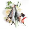 Mauvaise passe pour le poisson bleu – après la sardine, c'est au maquereau de se retrouver en danger