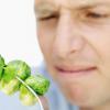 Faire manger des légumes est plus compliqué pour les hommes que pour les enfants