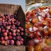La prune le fruit de la rentrée