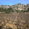 Le vin du mois : Domaine des Chênes à Vingrau dans les Pyrénées-Orientales