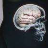Le Ventre notre deuxième cerveau