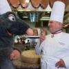 Un restaurant » Ratatouille » à Dyneyland Paris par Paul Bocuse ?