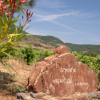 Le vins du mois : Le Domaine de Malavieille