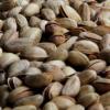 Des coques de pistaches pour chauffer une ville de Turquie
