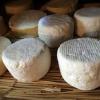 Le fromage encore attaqué sur le marché américain – Mais heureusement Obama en visite à Paris dernièrement à réclamé une assiette de fromages français au restaurant