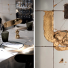 Design : Anahi à Paris un des tous premiers restaurants de » La Jeune Rue «