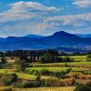 Le vigneron du mois : Domaine de Campaucels à Montagnac