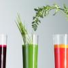 M.A.D : Les relations entre – Alimentation et Cancer – 2 conférences pour vous faire du bien !