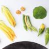 Les chefs de cuisine dans leurs jardins, les légumes stars des assiettes ! … Philippe Mille : « Chaque légume nous force à être réactif et créatif »