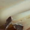 Ils produisent de l'électricité à partir du fromage, c'est dans les Alpes Françaises
