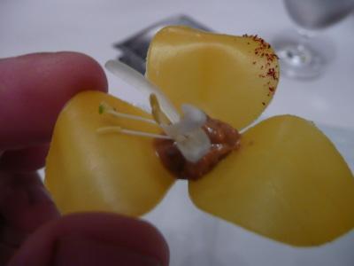 Une fleur à croquer