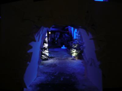 L'entrée imaginée comme un igloo