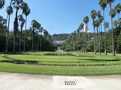 Alger d couvrez le jardin d essai un joyau dans la for Jardin olof palme alger
