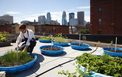 Les chefs cultivent leurs jardins m me sur les toits for Jardin sur le toit