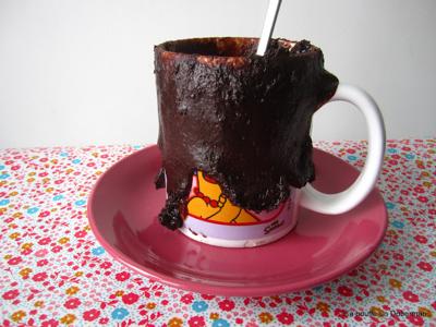 Mug Cake Rapide Micro Onde Fruits