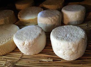 fromage affinage sur bois