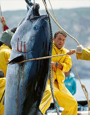 Le temps à de Khmelnitski la pêche