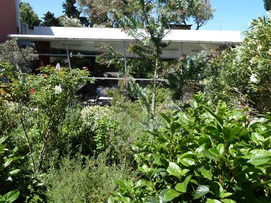 J 200 dans 200 jours le jardin des sens montpellier for Restaurant jardin montpellier