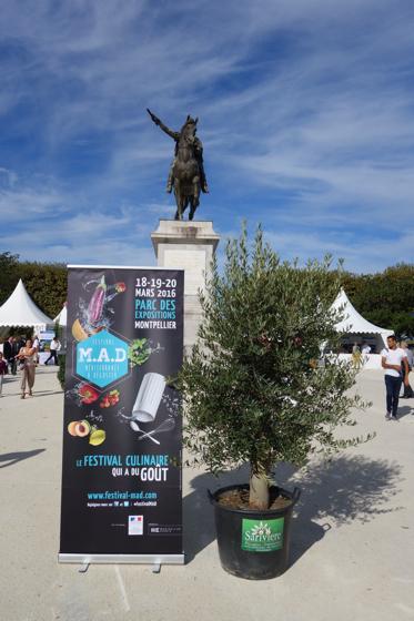 Toques et Toqués 2015 Montpellier