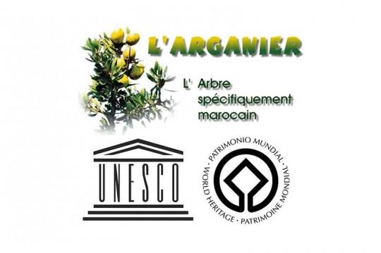 L'arganier classé Patrimoine immatériel de l'Unesco
