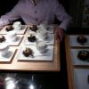 Chronologie d'un oursin au caviar ….. par les Pourcel !