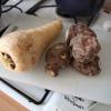 Blog de cuisine au féminin – un phénomène de société + de 10 000 sur la toile…