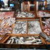 Les français consomment beaucoup plus de poissons que ce que la mer peut fournir
