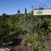 Alice Waters » Chez Panisse «… 40 ans au service des bons produits