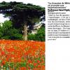 La presse en parle : les lieux les plus romantiques de Montpellier