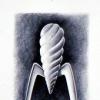 Le presse-fruit de P. Starck : un objet icône