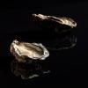 Bassin de Thau : Tabouriech l'huître star de la table cette fin d'année