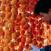 » Foodpolis » toute une région de Corée du Sud dédiée à l'alimentaire, de nombreuses entreprises françaises intéressées.